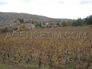 Village viticole du mâconnais